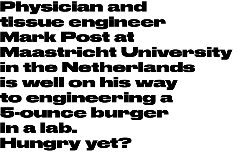 Commercial Type News Druk Wide By Berton Hasebe For Bloomberg